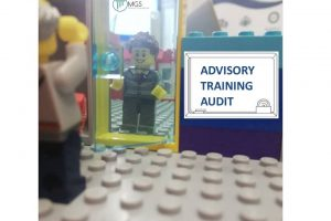 3.4 Lego Serious Play Audit ISO 19011 (2)